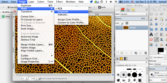 How to generate extruded 3D model from images in OpenSCAD